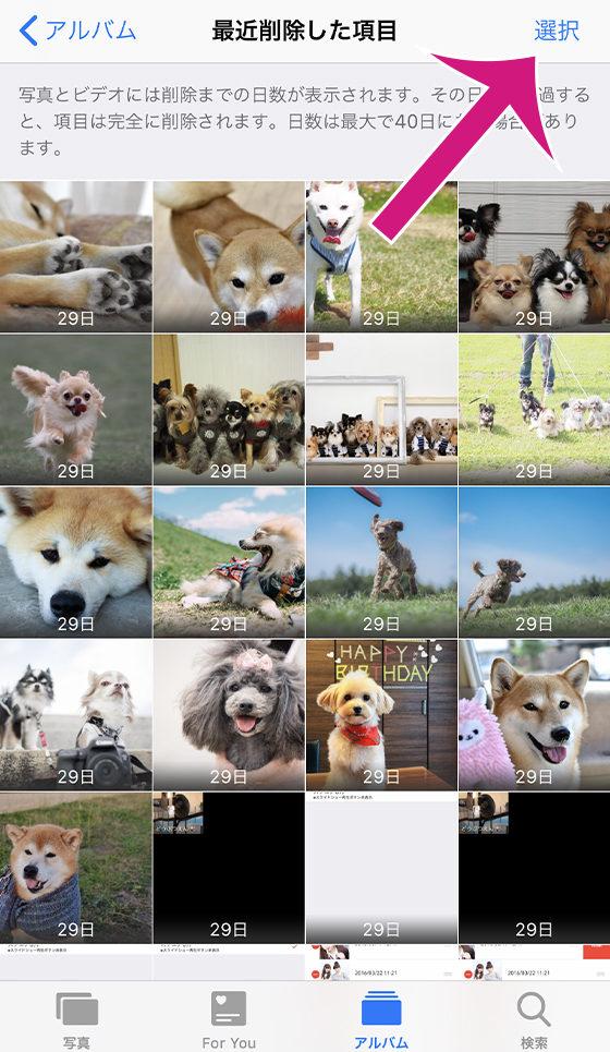 標準の写真アプリ[最近削除した項目]の選択ボタンをタップ