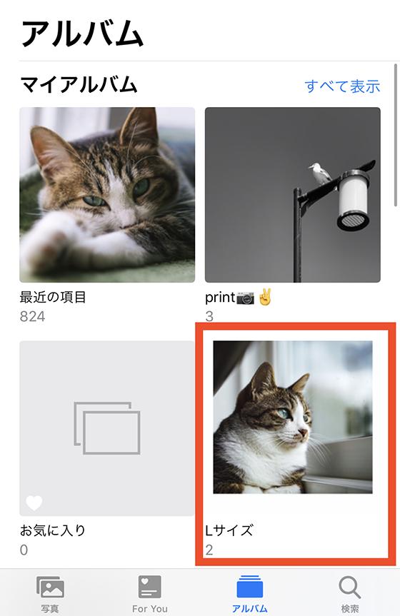 iPhone標準の写真アプリ内のアルバム