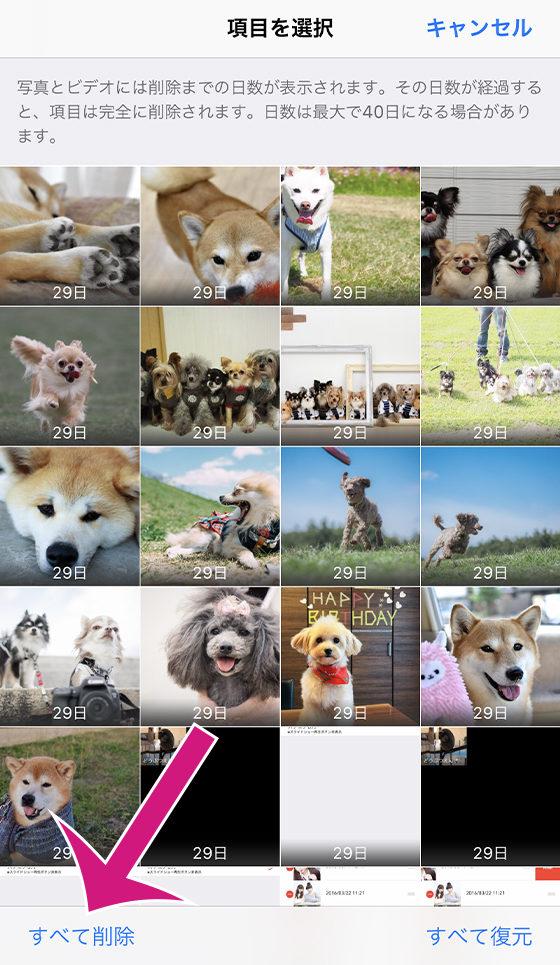 標準の写真アプリ[最近削除した項目]のすべて削除ボタンをタップ