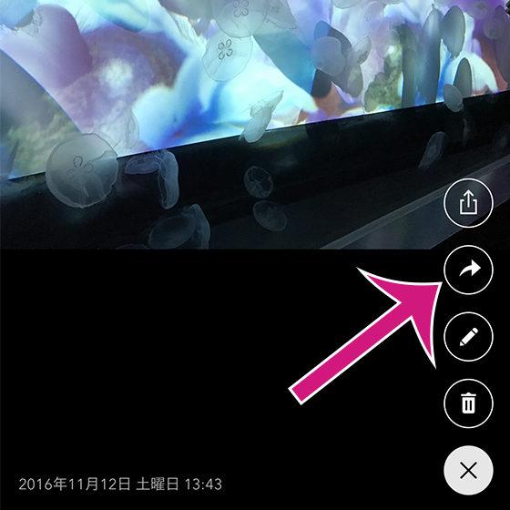 「さくっとシークレット」の写真・ビデオを1つだけ表示させる画面で移動ボタンをタップ